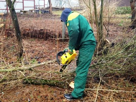 Борьба с растительностью